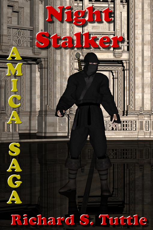 Night Stalker, Amica Saga #3 - eBook